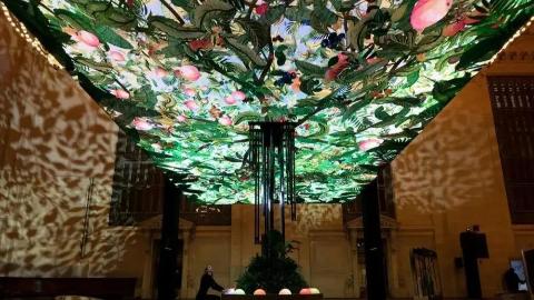 """神奇又好玩的互动装置艺术"""" Giving Tree""""。"""