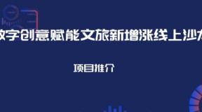 【沙龙】重磅!丽江市投资促进局赵莲玉副局长邀您参加丽江数字文旅招商项目