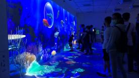 投影技术让使游客徜徉在台湾新开放Xpark水族馆的蓝色海洋中