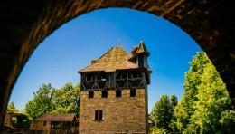 看欧洲最大露天博物馆,是如何实现文化活化和乡村振兴的?