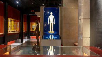 展项作品展示36 中国医史博物馆——传统医学针灸铜人联动交互展示