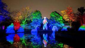 创意分享 全球光影互动乐园案例合集