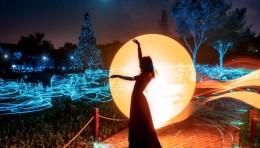 中国舞美四届展丨明道携手新锐艺术家马博团队共造《光林幻境》